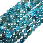 1 Strand of Apatite 7x10mm Irregular Nuggets Semiprecious Gemstone Beads