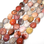1 Strand of Semiprecious Gemstone Large Nugget Beads - Fossil Coral