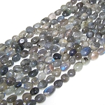 1 Strand of Labradorite 7x10mm Irregular Nugget Semiprecious Gemstone Beads