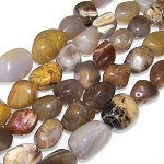 1 Strand of Semiprecious Gemstone Large Nugget Beads - Petrified Wood