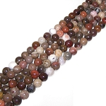 1 Strand of 8mm Round Semiprecious Gemstone Beads - Petrified Wood Jasper