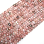 1 Strand of 8x5mm Puff Rondelle Semiprecious Gemstone Beads - Red Plum Blossom Jasper